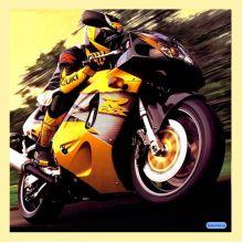 Sport / Motorcycle